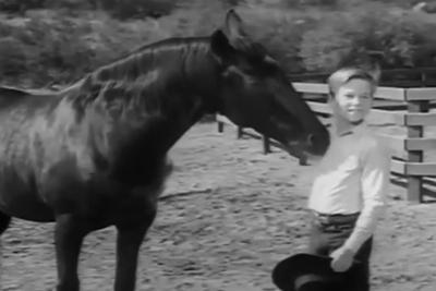 Addio a Bobby Diamond, il ragazzino che domò 'Furia'