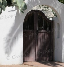 I love the shadows on the wall next to the gate. Photo taken in Tucson.