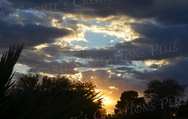 Tucson is blessed with many stunning sunsets; this is just one!