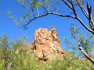 Picture Rocks, Arizona (just west of Tucson)