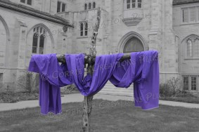 I selected the royal purple in this photo to emphasize the royalty of Christ our Savior.