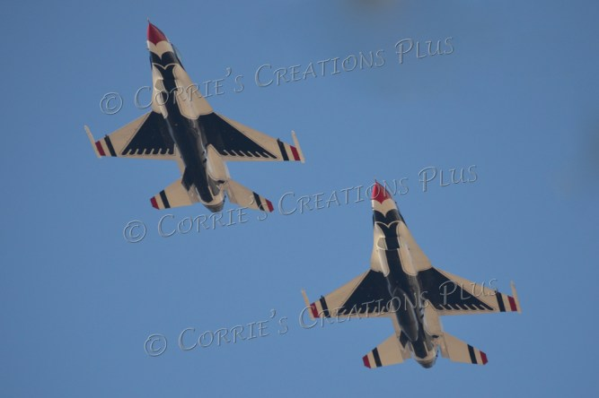 Up close! Two Thunderbirds flew just a few feet above me.