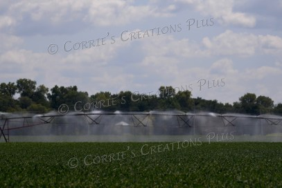 Center point irrigation; southeastern Nebraska