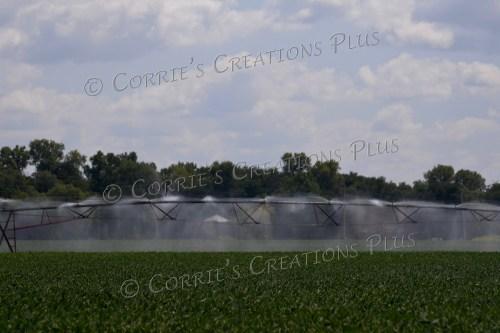 Center point irrigation; southeastern Nebraska