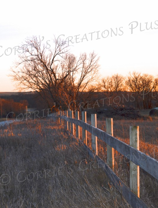 The setting sun reflects nicely on this fence line in Nebraska.