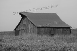 You can drive for miles in southeastern Nebraska and not see enough historical farm buildings.