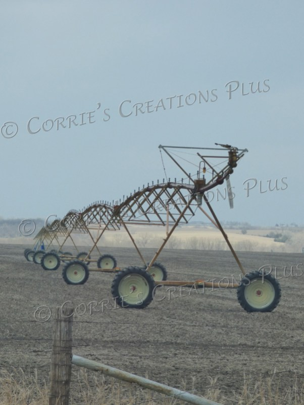 I enjoy the perspective on this center-point irrigation photo.