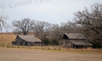 Side by Side. Two abandoned farm buildings in southeastern Nebraska