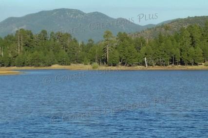 Still waters. Photo taken in northern Arizona