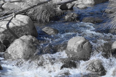 Water rarely flows in Sabino Canyon but, when it does, it is beautiful.