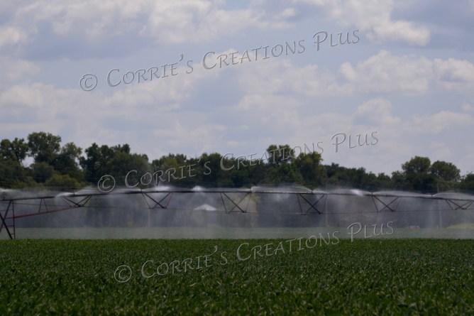 Center-point irrigation in full swing in southeastern Nebraska