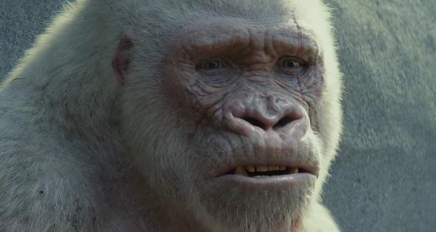 rampage-furia-animale-george-gorilla