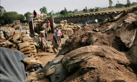 India: As grain stockpiles go up the poor go hungry because of a corrupt system