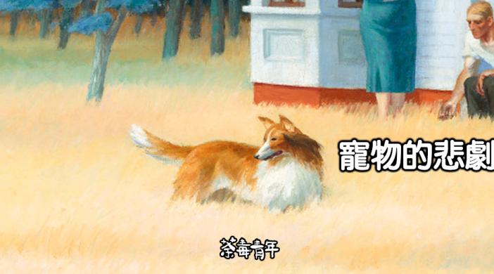 三松閣﹕寵物的悲劇 4