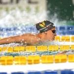 Swim Stats, l'analisi in numeri degli Assoluti 2021