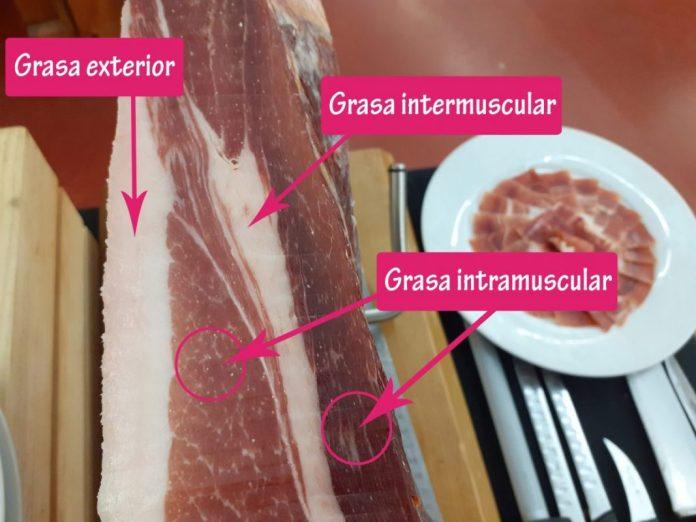 ¿Conoces que tipos de grasa tiene el jamón?