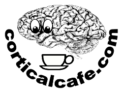 The Cortical Cafe
