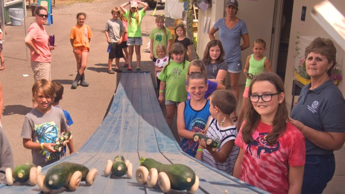 Racers look on as zucchini cars race down the track Wednesday at the Cortland County Junior Fair.