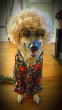 Grandma Bailey (Jocelyn Feller)