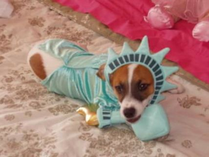 Skeeter of Liberty (Jacklyn Morgan)
