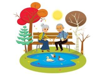 seniors feeding duck illustration