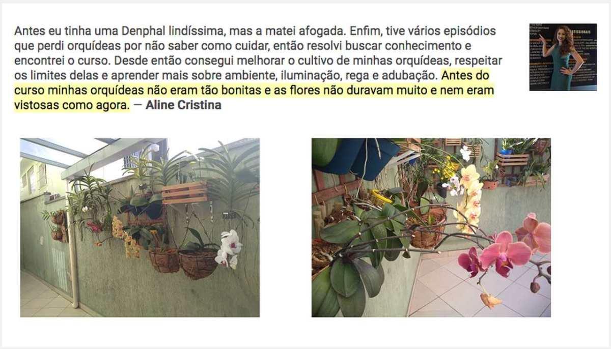 Curso Orquídeas Sem Segredos é bom e funciona