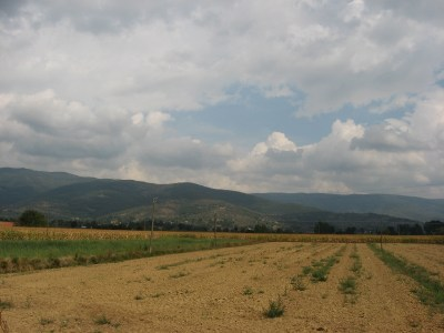 Farmland in Tuscany.