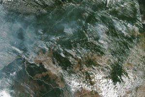 A satellite image of several fires burning in the Brazilian Amazon forest captured on Aug. 13, 2019. Courtesy of NASA