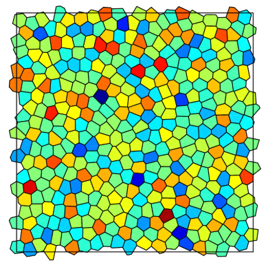 This image of Li's model shows each cell's possible individual properties that lead to overall mechanical heterogeneity in the tissue. Photo provided by Xinzhi Li