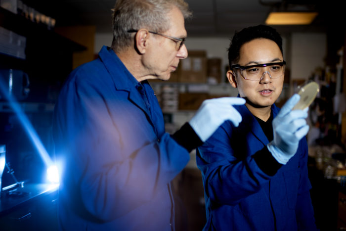 10/25/19 - BOSTON, MA. - Kim Lewis, a University Distinguished Professor of Biology and Yu Imai, a postdoctoral research associate at LewisÕ lab, hold a petri dish encasing darobactin, a new type of antibiotic that can selectively kill Gram-negative bacteria. Photo by Matthew Modoono/Northeastern University