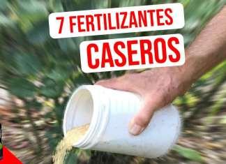 Te dejo siete recetas de fertilizantes caseros para que pruebes. Están hechos de ingredientes que probablemente ya tenga a mano, incluyendo algunas cosas que probablemente tengas la costumbre de tirar #Huerto #huertourbano #jardin #jardineria #cultivar