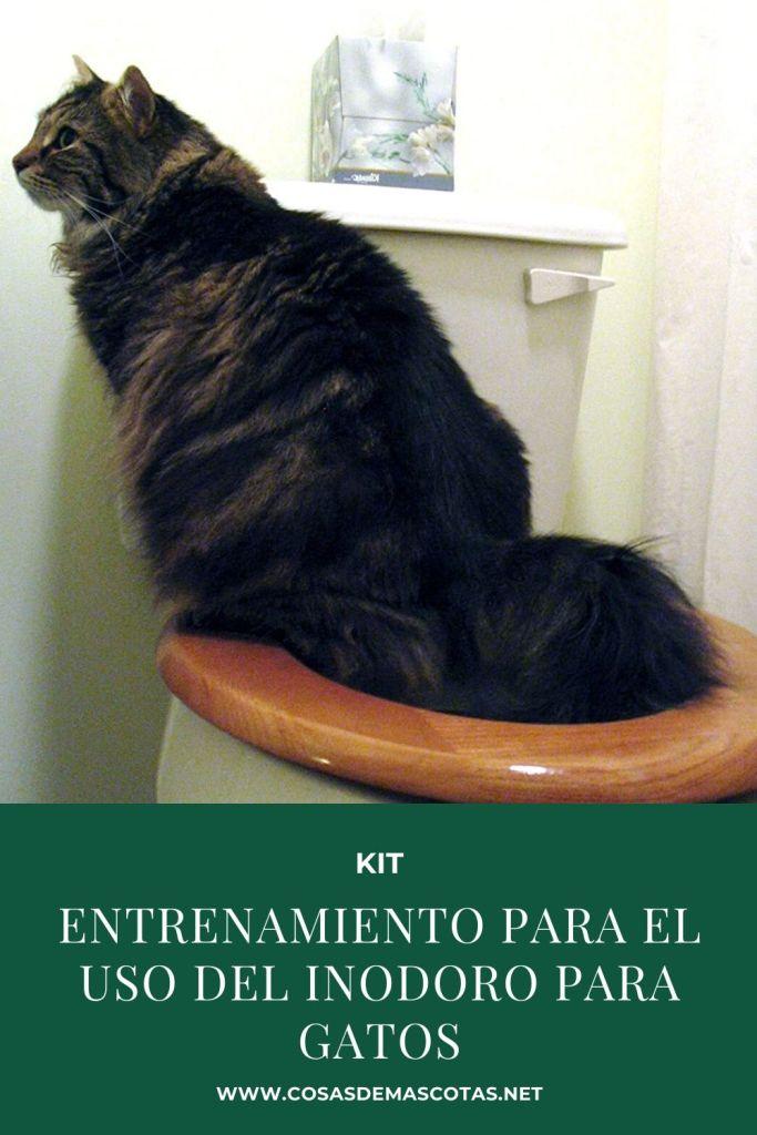 entrenamiento para el uso del inodoro para gatos