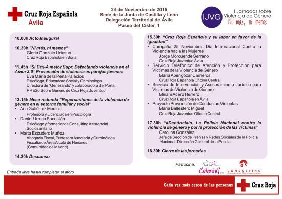 IJVG Programa