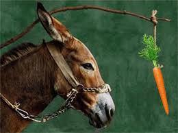 zanahoria-y-burro