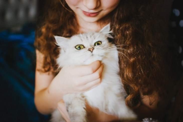 Los gatos son mascotas muy queridas por los niños