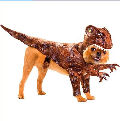 Raptor Dog Costume