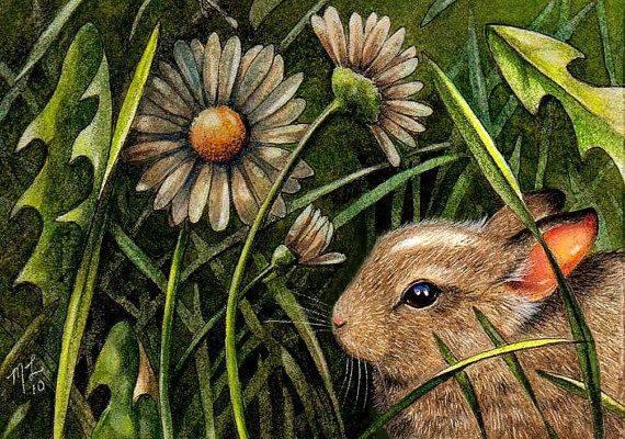 Baby Bunny Rabbit by Melody Lea Lamb