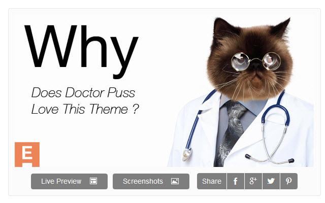 Doctor Puss