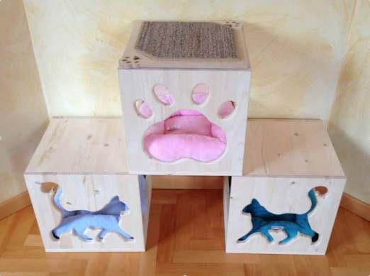 3-Cat's-Home-II