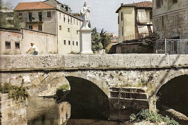 Appuntamento con l'airone cenerino al Ponte di San Giovanni Nepomuceno