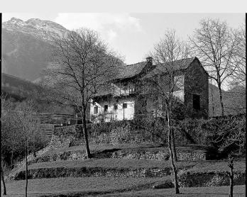 Muretti a Secco in Valdimagna