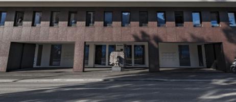 Il Tacchino di Elia Ajolfi a Lugano sotto il palazzo