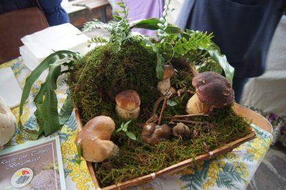 cesto di funghi e tartufo bergamasco