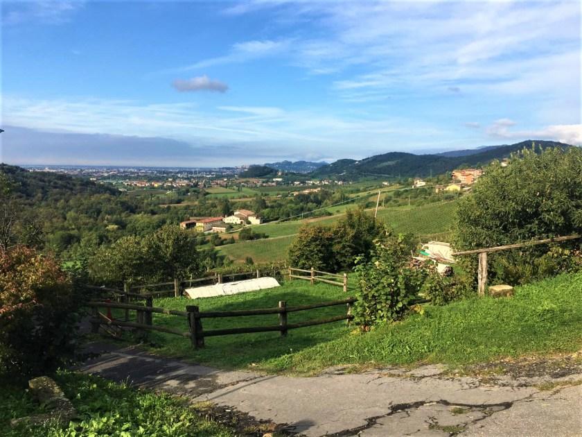 Paesaggio Cammino del Vescovado.jpeg
