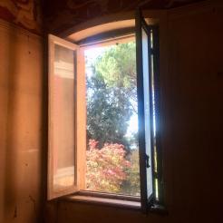 Gli alberi di Villa Astori visti dalla finestra del primo piano