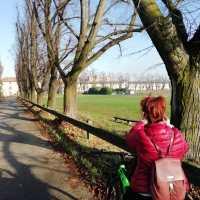 Ciclopercorso Quadrifoglio: dalle Terre del Vescovado ai Castelli Colleoneschi in bicicletta