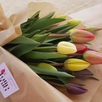 Regalarsi un mazzo di tulipani di Tulipania, il campo di fiori che da Terno d'Isola te li porta direttamente a casa