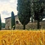 Basilica di Santa Giulia Bonate Sotto Luogo del Cuore FAI Bergamo