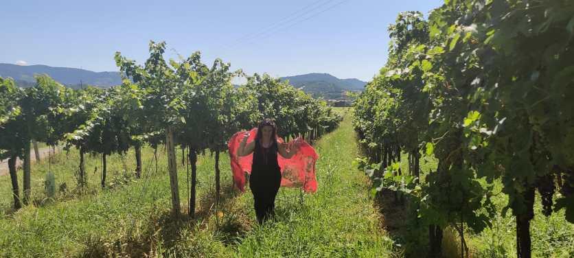 Raffi cammina nelle vigne