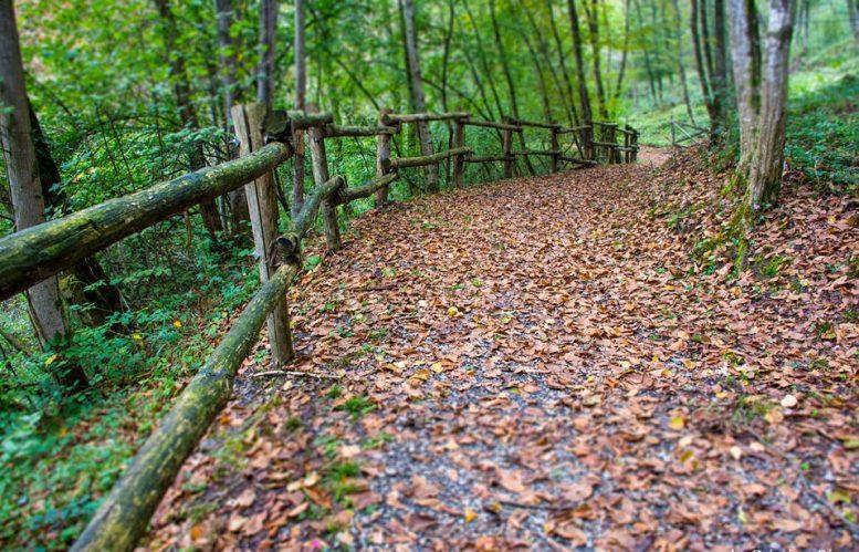 Parco del Brunone in autunno